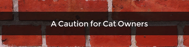 A Caution for Cat Owners