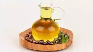 Minyak Jarak untuk Kesehatan dan Kecantikan