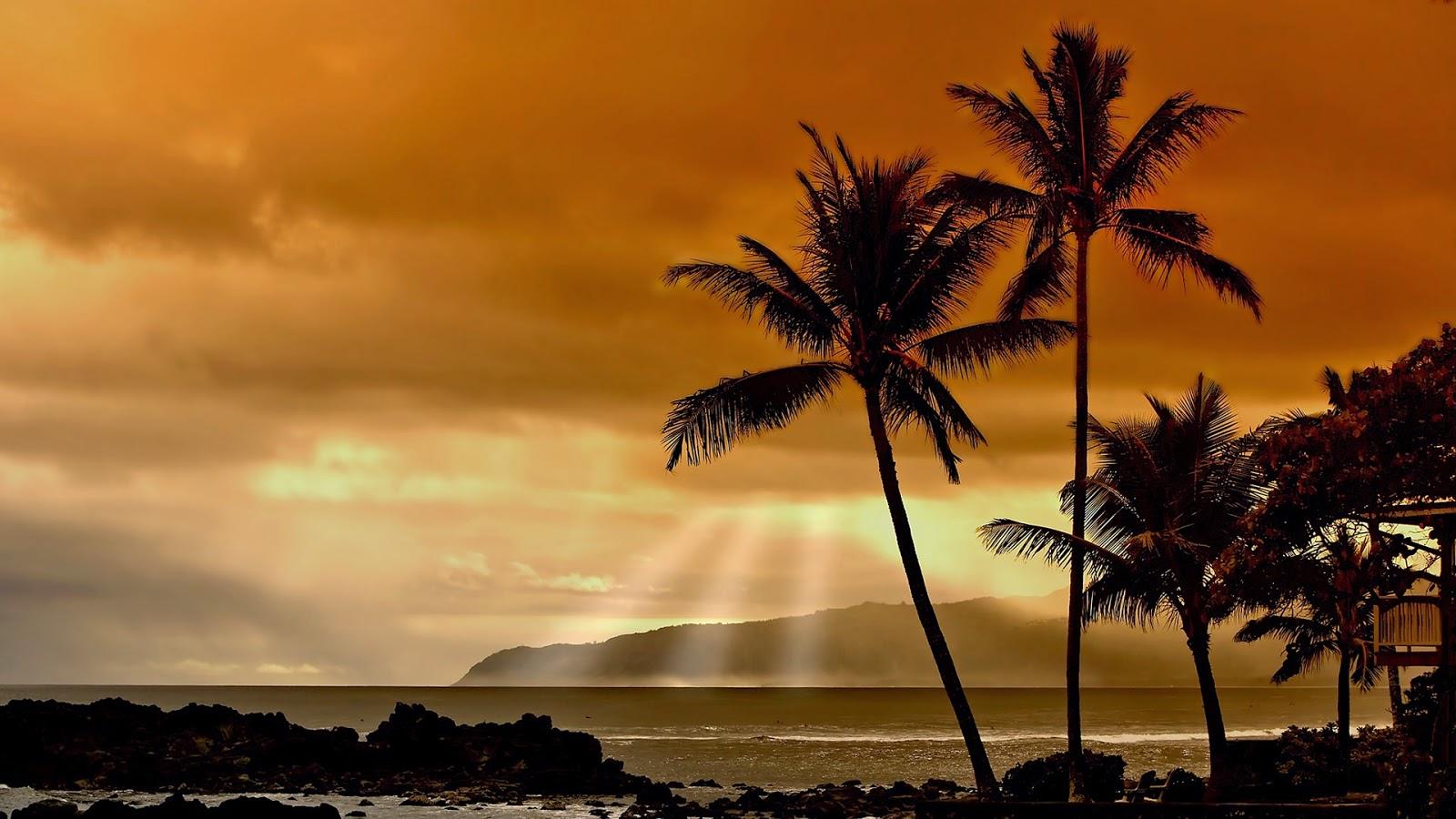 Achtergrond met eiland met palmbomen bij zonsondergang