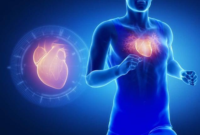 លទ្ធផលរូបភាពសម្រាប់ Kesehatan Jantung Dan Paru-Paru
