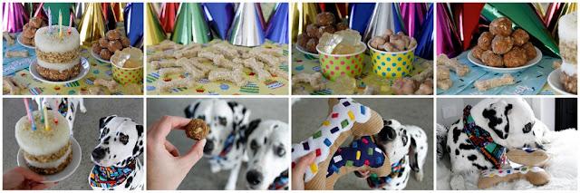 DIY dog birthday party with treats, dog birthday cake, and homemade toys.