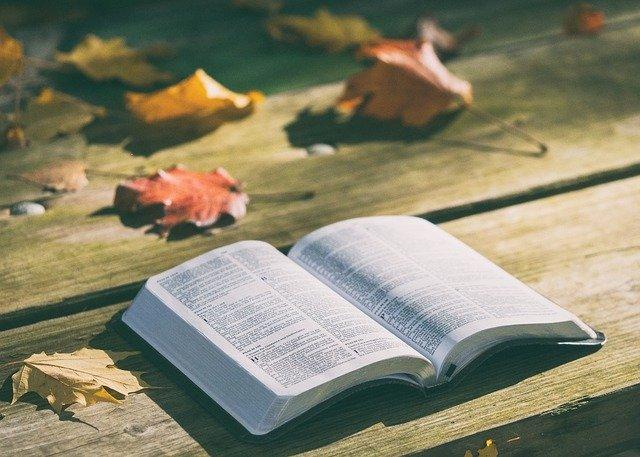 10 tipos de Métodos de Crítica Bíblica