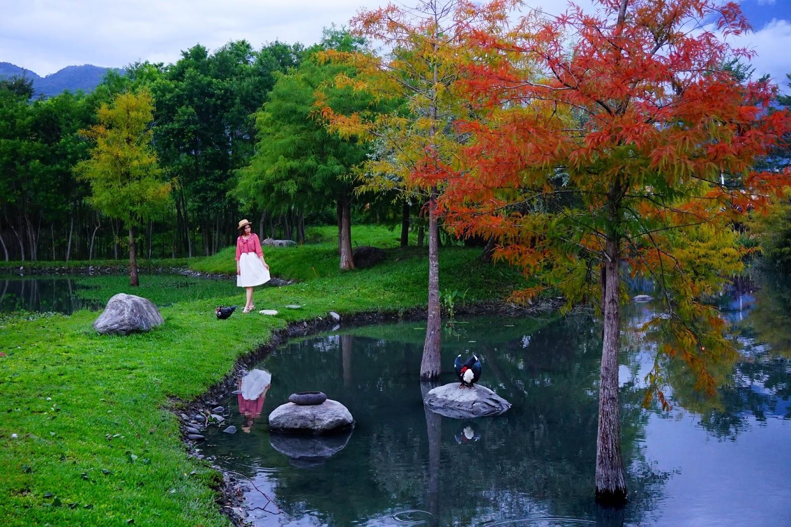 beautyanxiety.com-beautyanxiety.com-cultural-park-forest-DSC08891.jpg