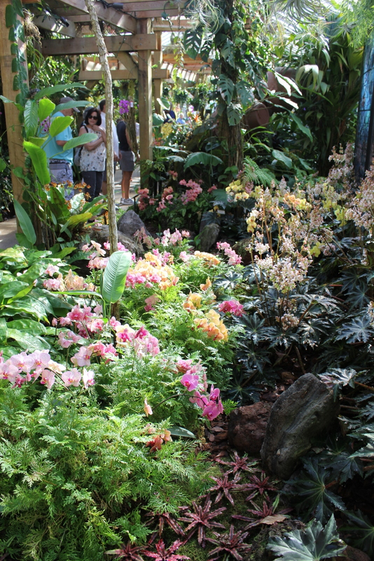 Field Trip Friday: Marie Selby Botanical Gardens - Catching Happiness