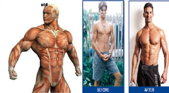 How Long You Should Train To Notice Muscle Gain? bodybuilding110
