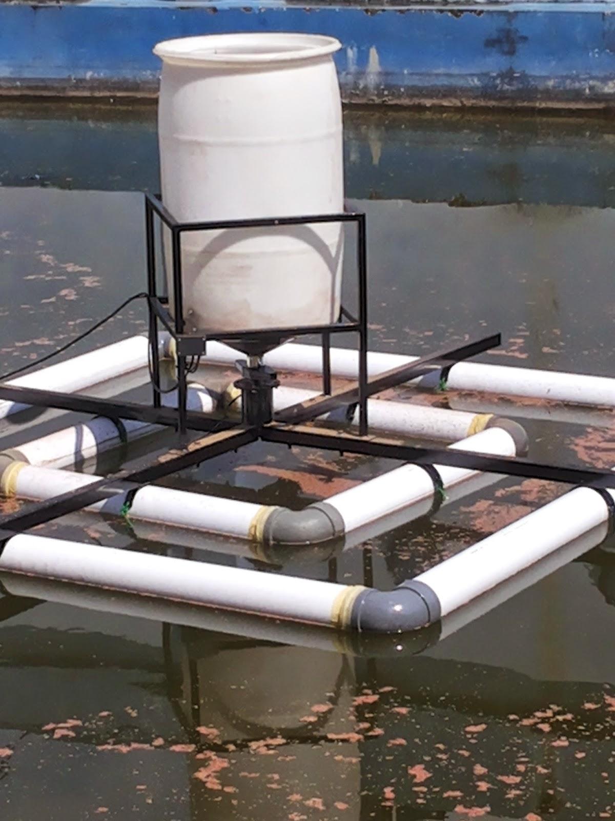 Automatic Feeder : Solusi memberi makan ikan menjadi mudah dan tepat