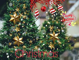 Christmas Celebration - How To Celebrate Christmas Night?
