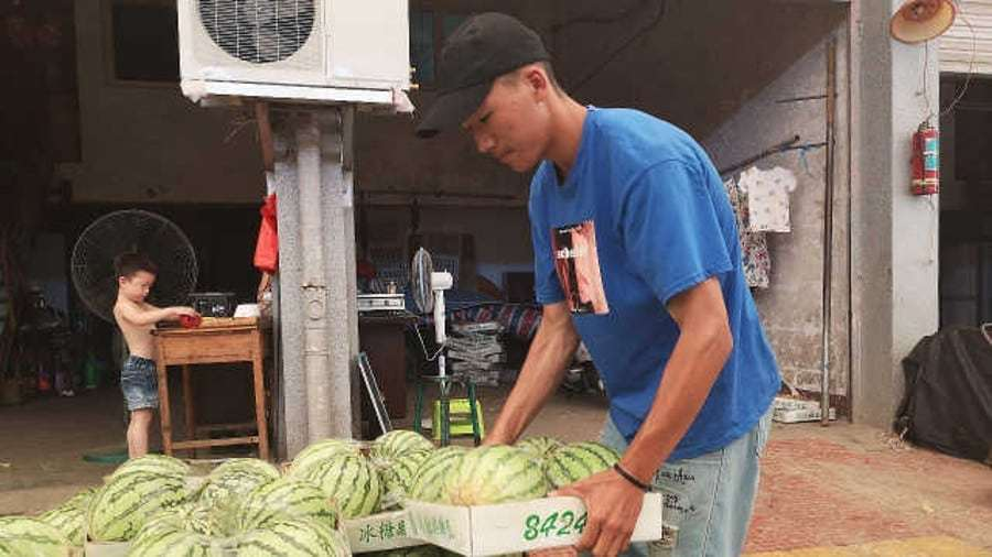 Hardworking student sells watermelon for tuition fee but declines donations