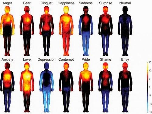 Bagaimana Cinta Menghangatkan Kita? Peta Emosi Ini Mengungkapnya