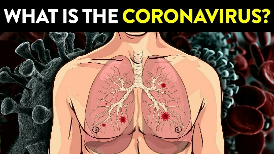 6 Very Important Things To Know About The Coronavirus