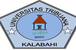 Alvons Gorang Ungkap Beasiswa di Universitas Tribuana Kalabahi Capai Rp7 Miliar