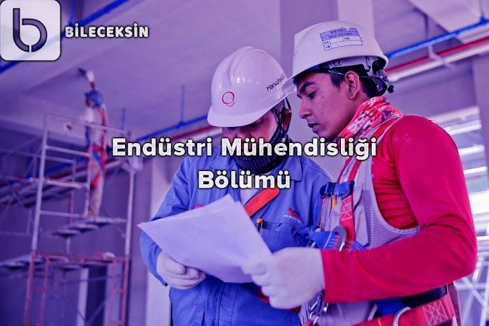Endüstri Mühendisliği Bölümü: Nedir?, Tanıtımı, Dersleri, İş İmkanları ve Maaşı