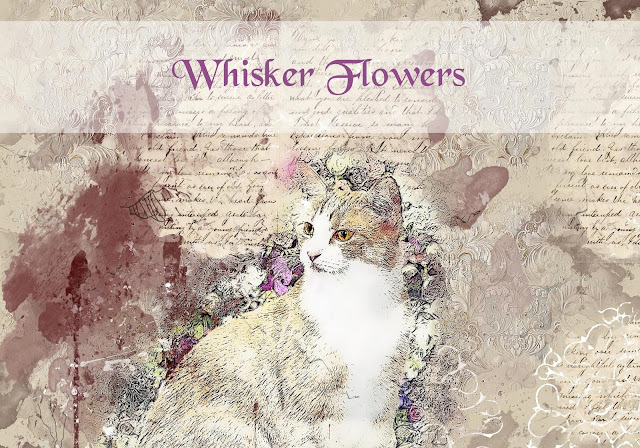Whisker Flowers whiskerflowers.wordpress.com