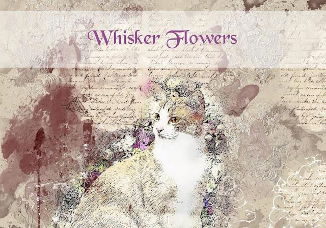 Whisker Flowers whiskerflowers.wordpress.com