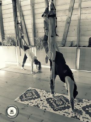 aero, aero yoga, aerofitness, aeropilates, air yoga, chile, concepcion, CURSOS, fly yoga, formación profesional, formación profesores, formación yoga aéreo, santiago, valparaiso, viña del mar, yoga aéreo