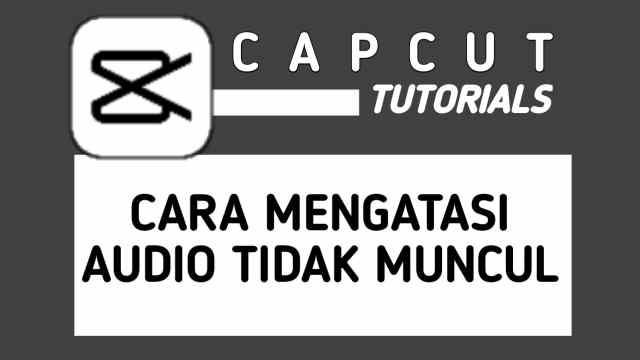 Cara Mengatasi Tidak Bisa Memasukkan Audio di CapCut