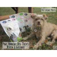 Bailey next to three bags of Paws Barkery Dog treats
