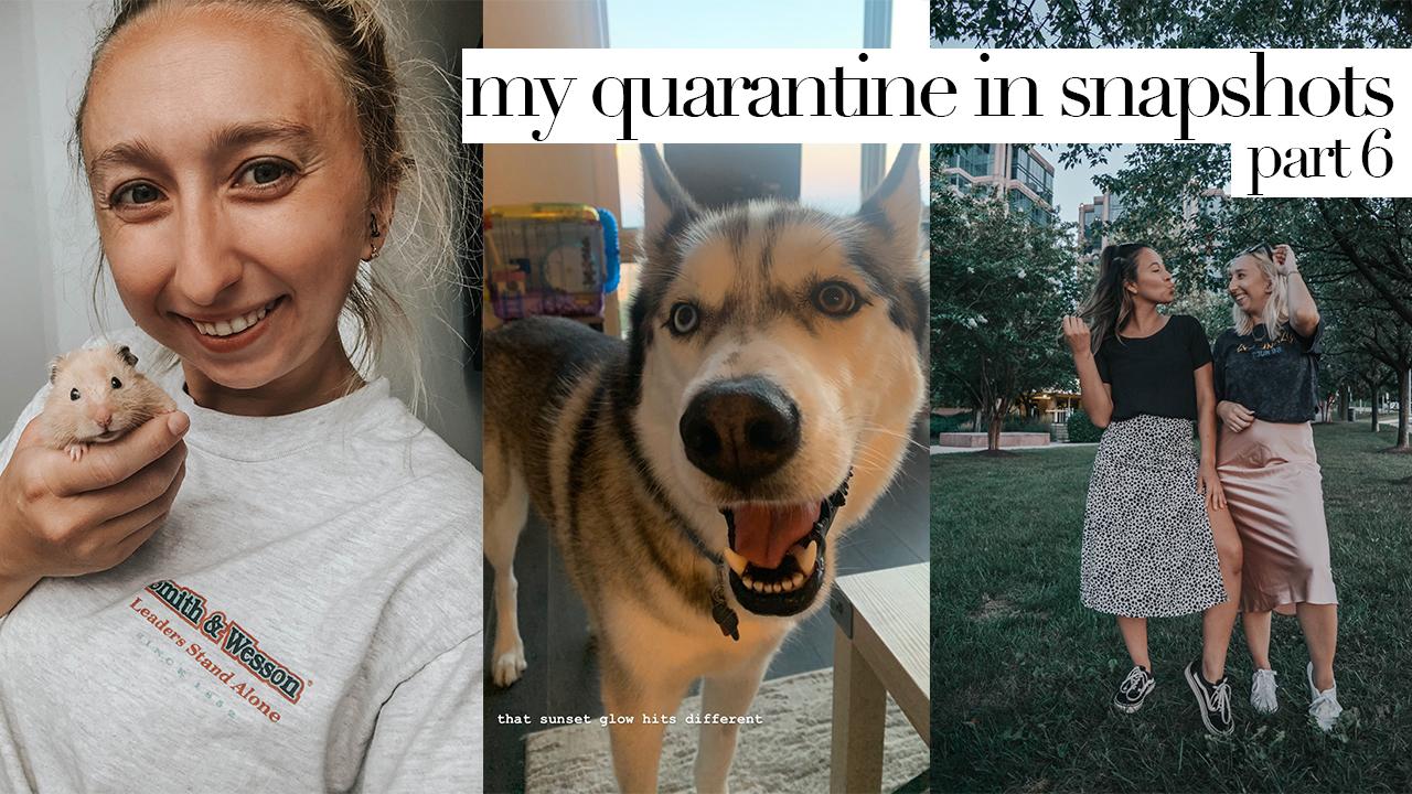 My Quarantine In Snapshots Part Six