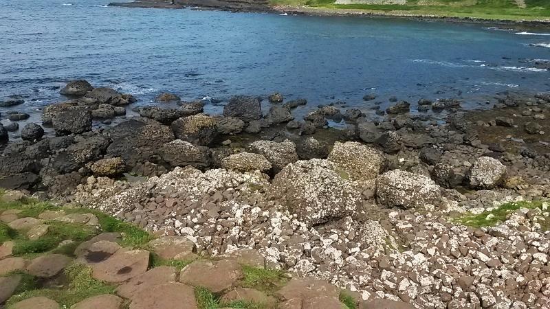 Coastline by Giant's Causeway