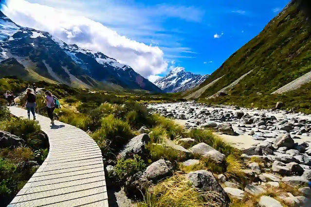 Valley Trail - New Zealand