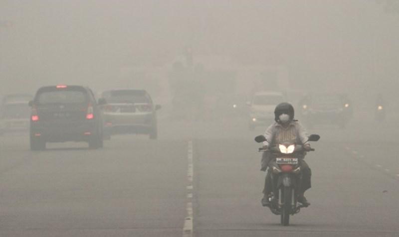 Berikut Ragam Upaya Jaga Kesehatan dari Kabut Asap Karhutla