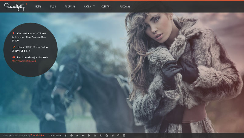Serendipity - Fullscreen, Photography WP Theme