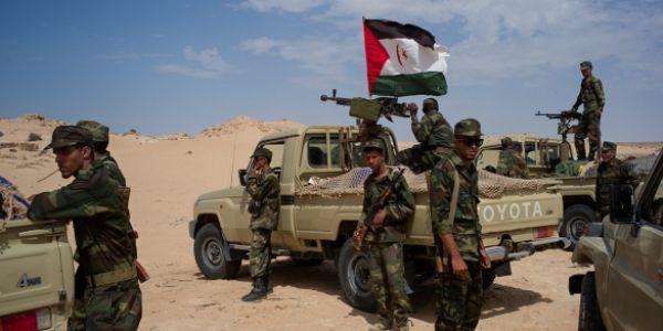 هل تلعب جبهة البوليساريو في الجزائر دور حزب الله في سوريا؟
