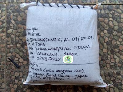 Benih Padi Pesanan  H. MUHTAR Karawang, Jabar.  (Sesudah di Packing)