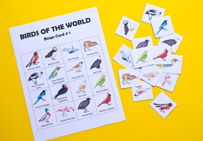 printable games for kids - bird bingo
