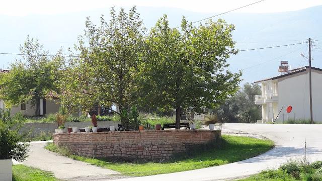"""Θεσπρωτία: 2 νεαροί είχαν κάνει """"ντου"""" σε 4 σπίτια στη Φασκομηλιά Θεσπρωτία, κλέβοντας από μαγειρικά σκεύη έως λάδι"""