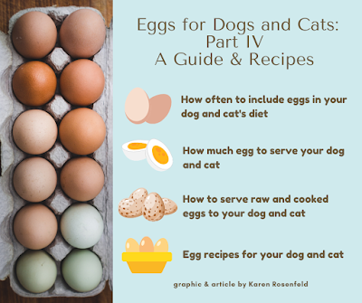 Ehgs for dogs and cats - how much to serve, and recipes