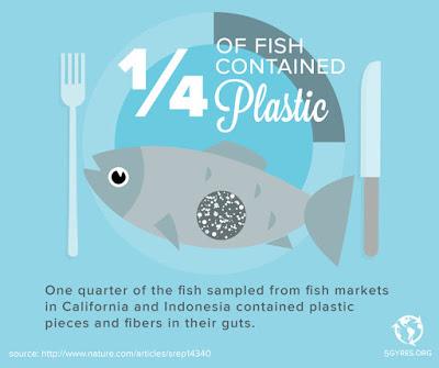 Ikan yang dikonsumsi manusia mengandung microbeads yang beracun