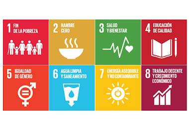 Diagnóstico del desarrollo sostenible dominicano hasta 2020