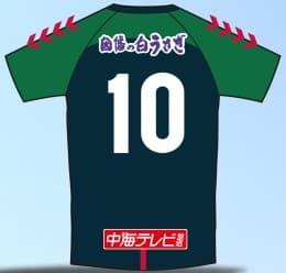 ガイナーレ鳥取 2018 ユニフォーム-ホーム
