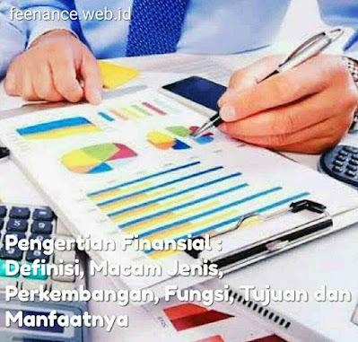 Pengertian Finansial : Definisi, Macam Jenis, Perkembangan, Fungsi, Tujuan dan Manfaatnya