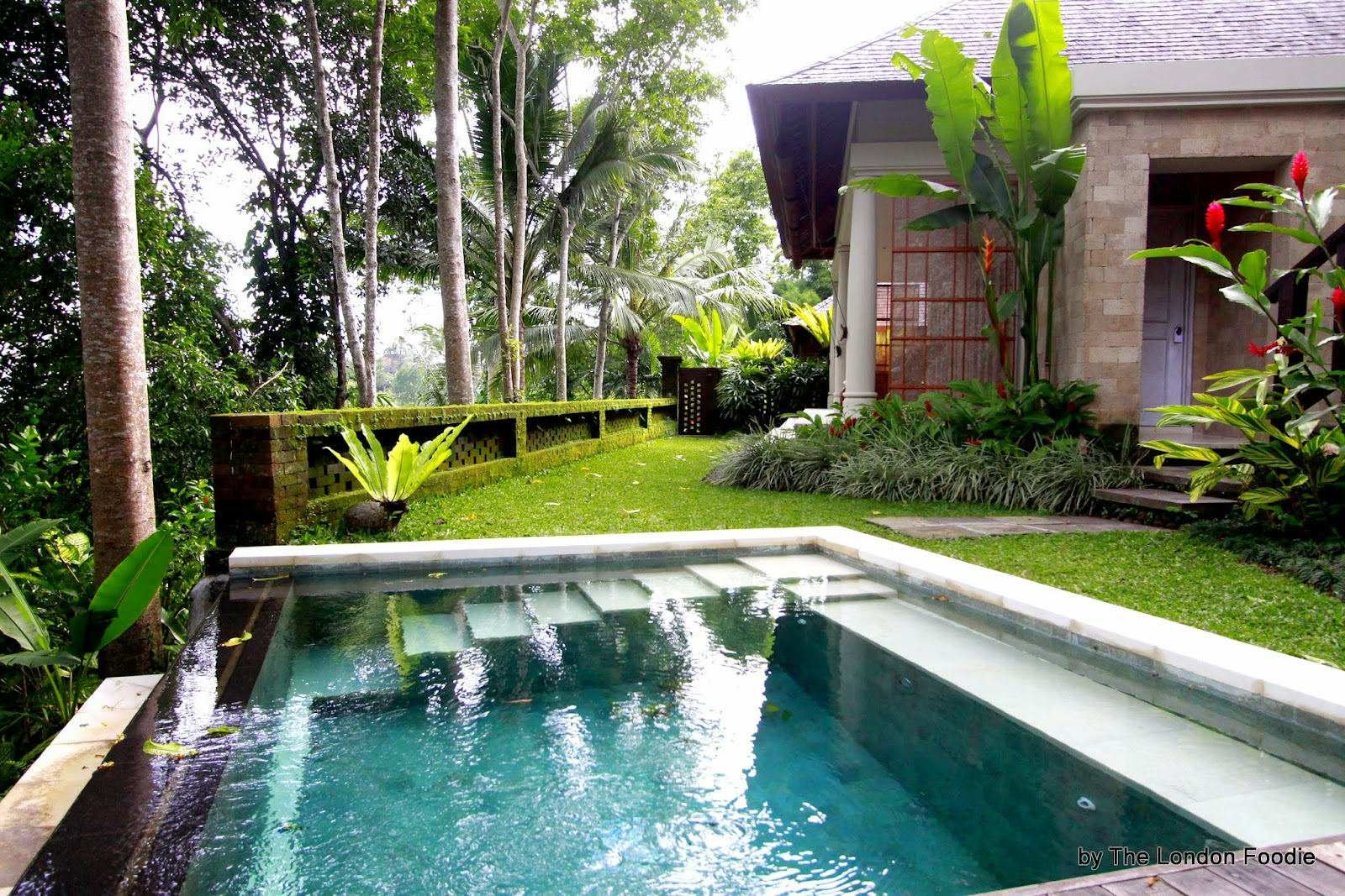 The London Foodie The London Foodie Goes To Bali Ubud Part I