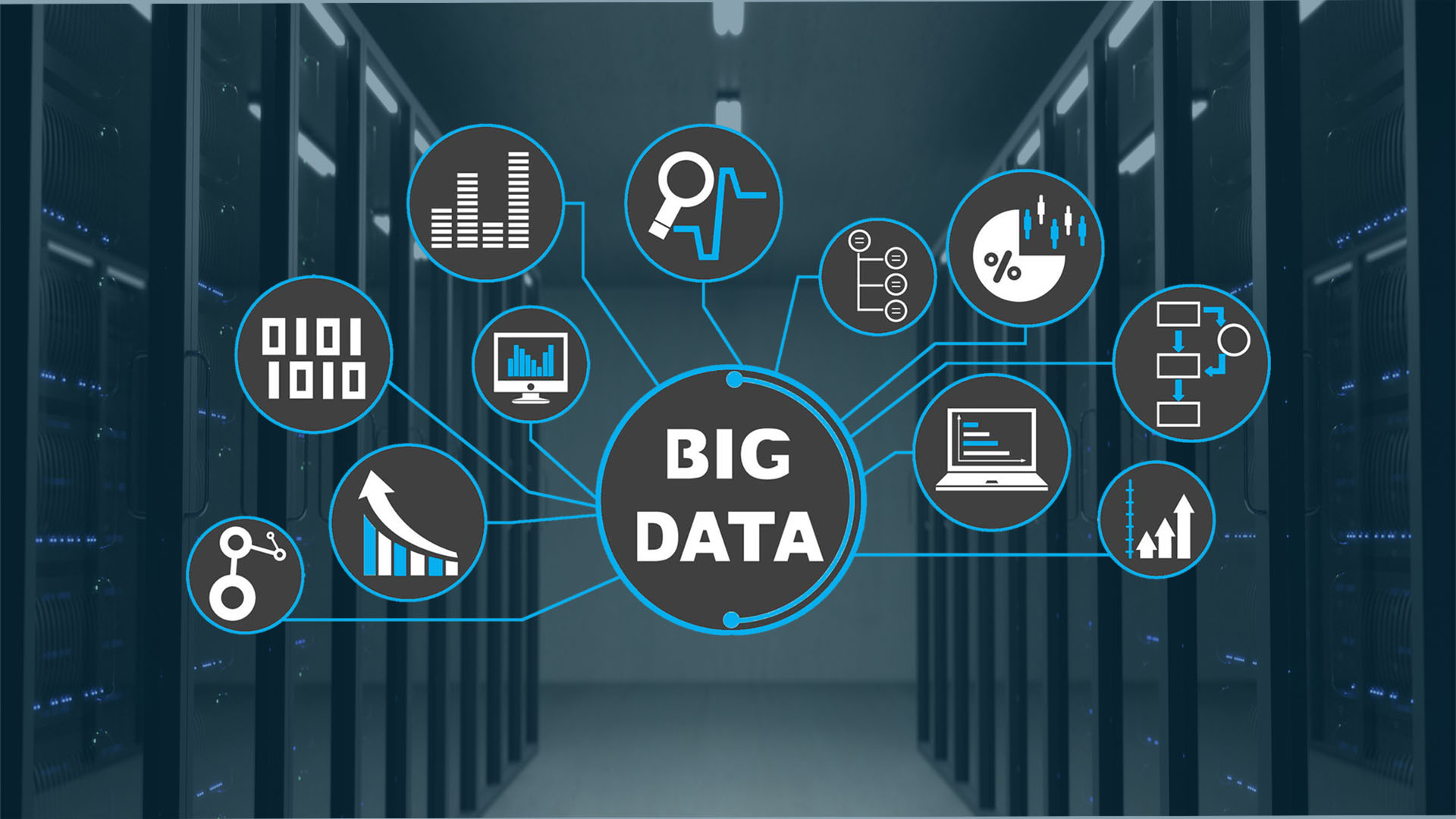 What to look for in big data companies