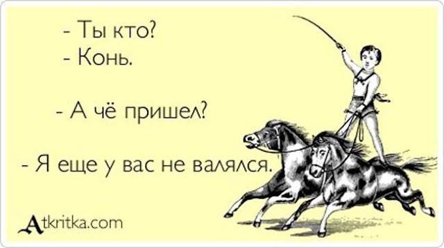 откуда русское выражение конь не валялся