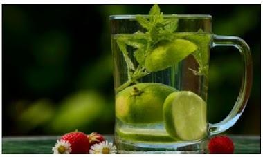 7 Tips Melakukan Diet Sehat Alami
