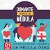 Día Nacional del Donante Voluntario de Médula Ósea