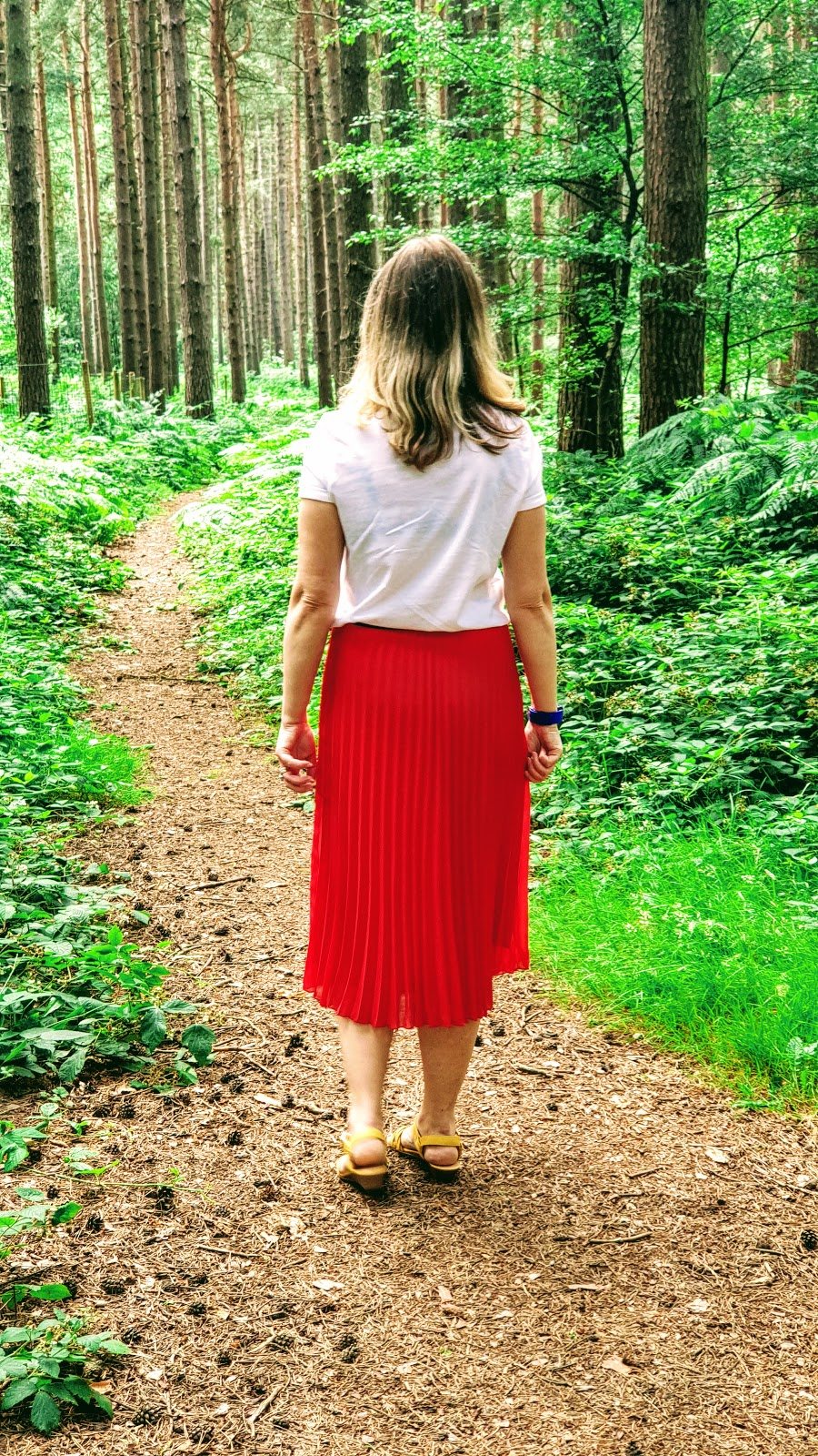 A Walk Around Sherwood Pines In The Summer