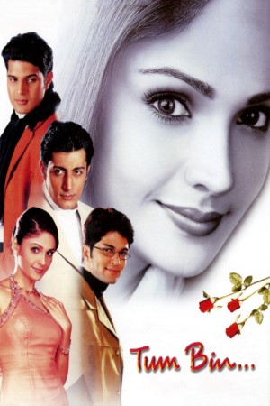 Download Tum Bin…: Love Will Find a Way (2001) Hindi Movie 720p WEB-DL 1.1GB