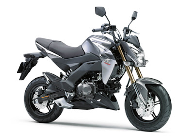 Spesifikasi dan Harga Kawasaki Z125 Pro