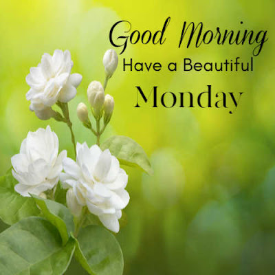 good morning monday new images
