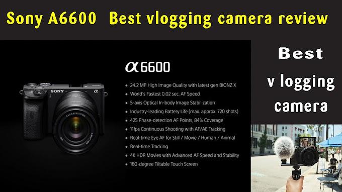 Sony A 6600 Best v logging camera review :technobos.com