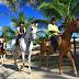 Feira de Turismo Rural será realizada em Gravatá, PE