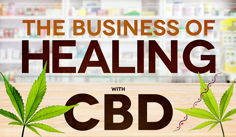 The Business of Healing With CBD #infographic