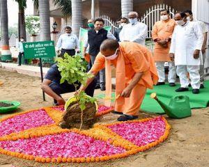'Mission Vriksharopan 2020' Drive—Uttar Pradesh