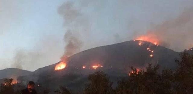 Ποιες περιοχές της Πελοποννήσου χαρακτηρίστηκαν πληγείσες από τις πυρκαγιές- Ποια τα μέτρα στήριξης