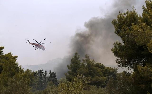 Φωτιά στη Λίμνη Ευβοίας: Οι φλόγες περικύκλωσαν τους πυροσβέστες – Τρεις τραυματίες